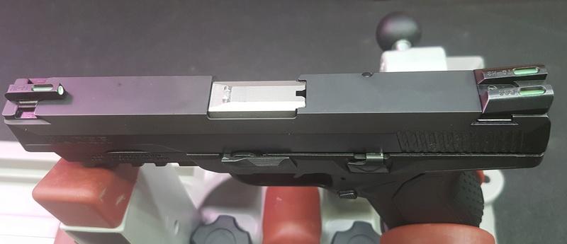 Ruger American Pistol .45  20170911