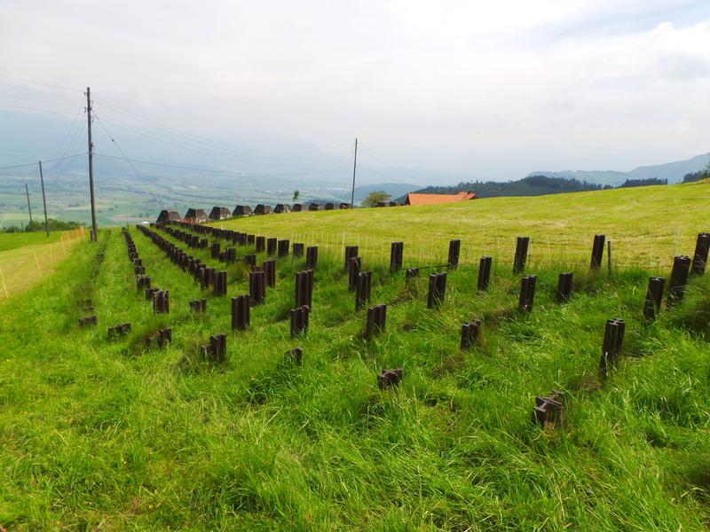 Fortifications en Suisse 20170513