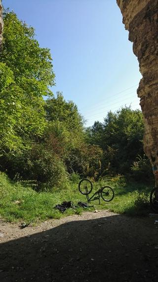 Sortie du 24 septembre 2017 (fort de Chelles, forêt Bondy, carrières Gagny) Dsc_0619