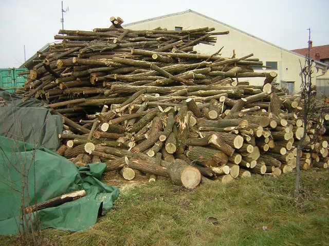 prezzi legna da ardere - Pagina 9