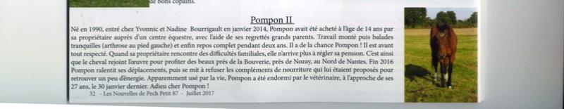 POMPON - ONC selle  né en 1990 - accueilli chez Pech-Petit en décembre 2013 Pompon10
