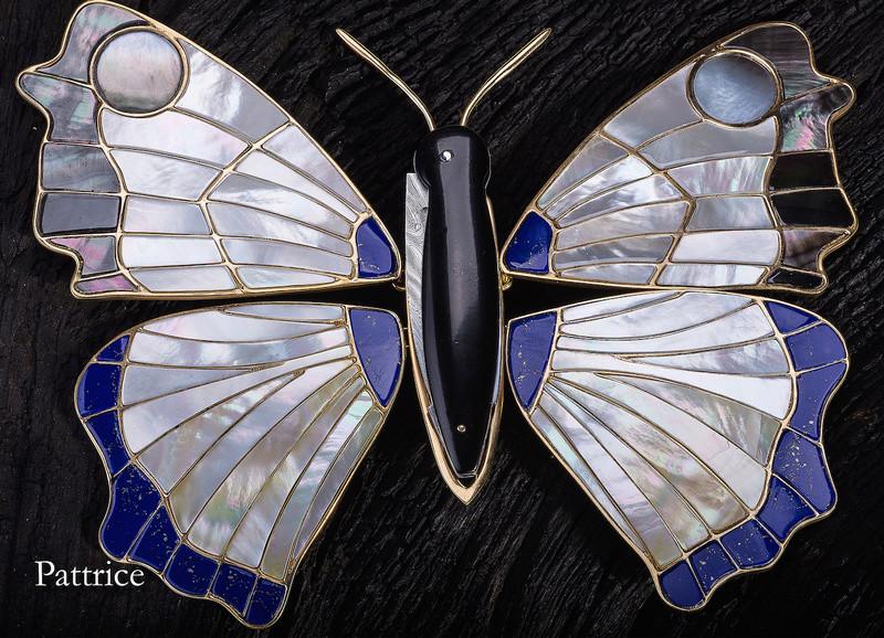 Le papillon Buther11