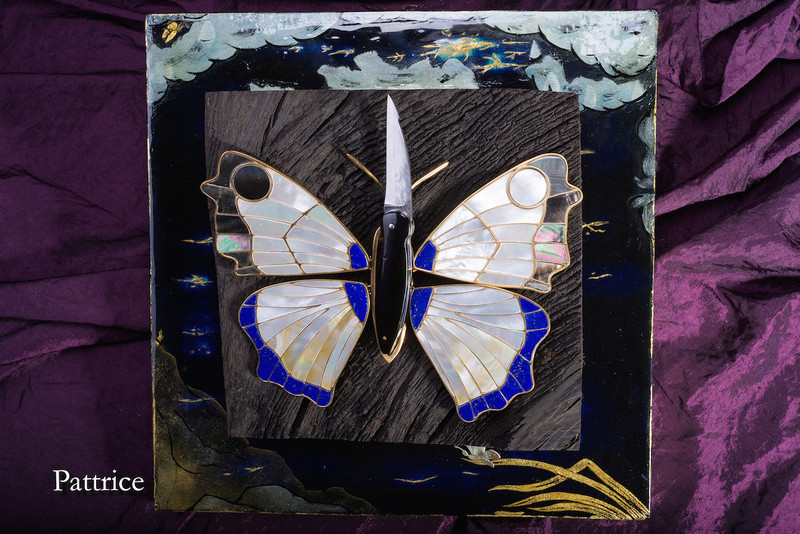 Le papillon P1-211