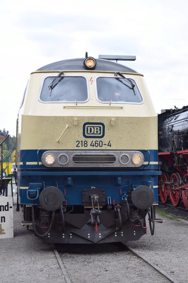 Die V160-Familie, Baureihe 210-219 der DB Dsc_1011