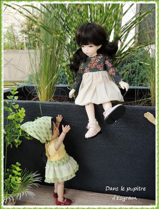 Rose, née Candy de Racoondoll  : L'année du chien ! (page 2 ) 002_ro11