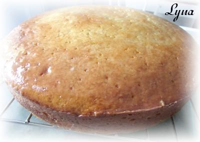 Gâteau au yogourt grec et crème sûre Gateau12