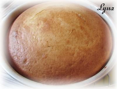 Gâteau au yogourt grec et crème sûre Gyteau10