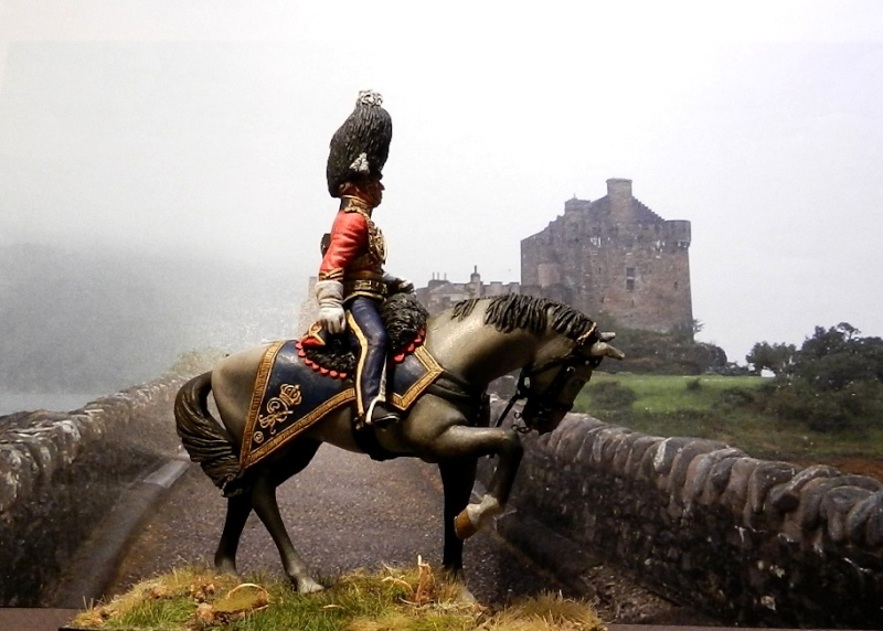 Scots Greys - Page 2 00431