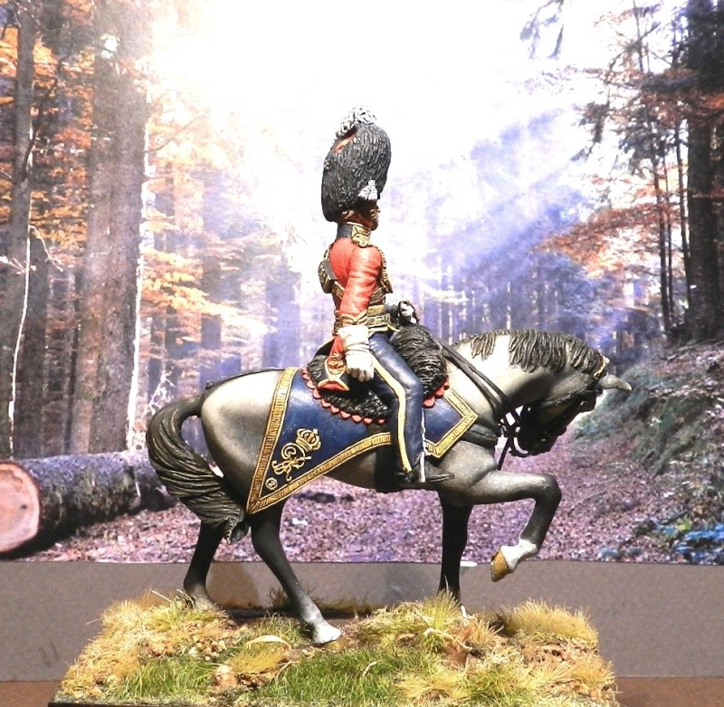 Scots Greys - Page 2 00620