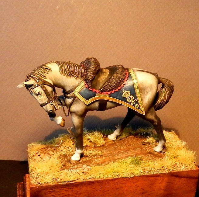 Scots Greys - Page 2 01016