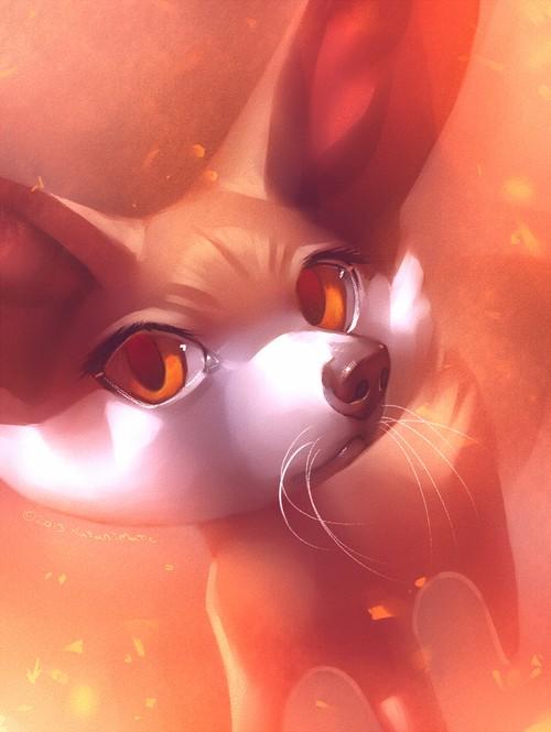 Pokémon X et Y Tumblr13