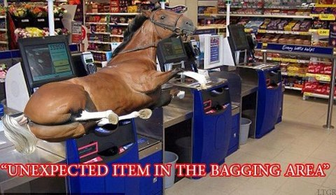 All this talk about horse meat in the burgers ...... 23325_11