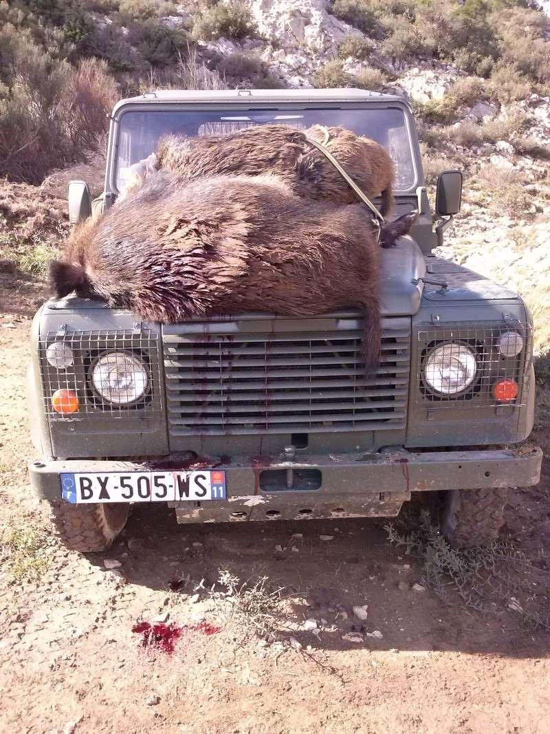 Saison de chasse au Grand Gibier 2012/2013 - Page 37 Cam00019