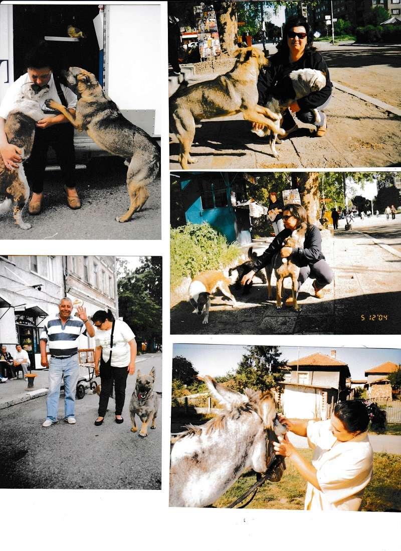 La BULGARIE Bg_20014