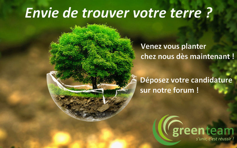 Les News de la Green Team : Recrut13