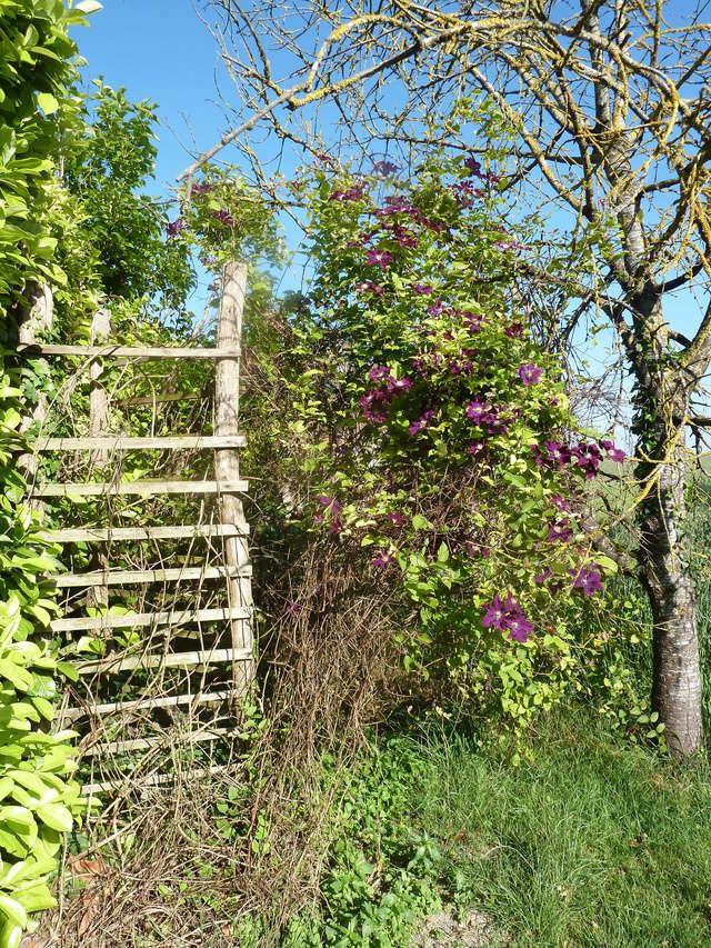 """Concours """"jardin cool"""" - les votes P1310310"""