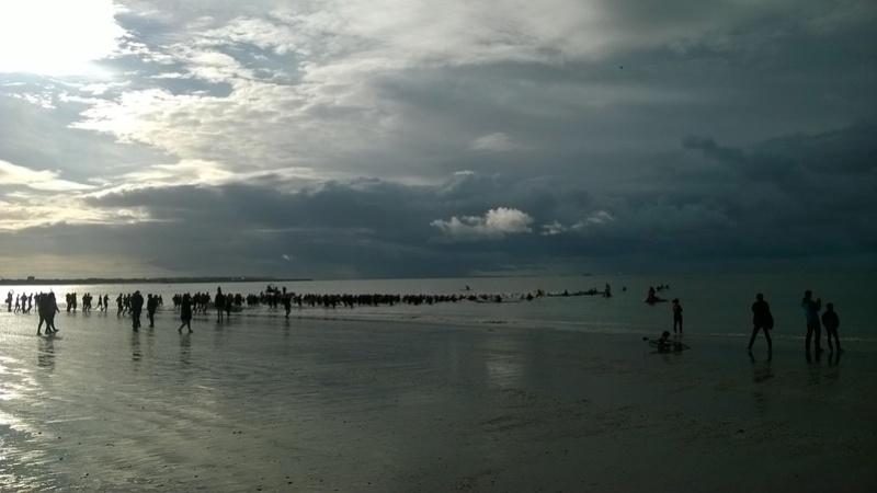 Triathlon de la Baule ! Wp_20159
