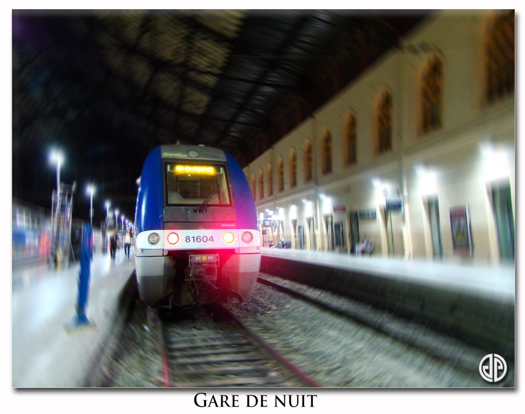 Mes photos ferroviaires - Page 3 Gare-d10