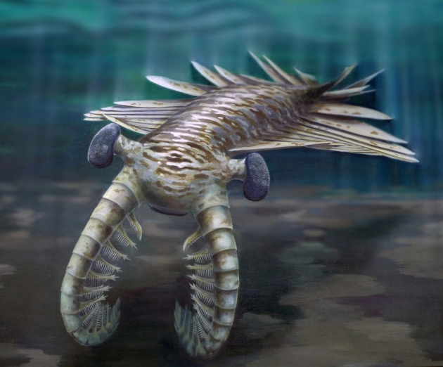 Anomalocaris another Science-fiction like creature Anomal18