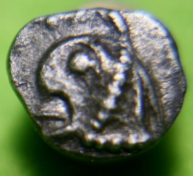 carré creux de Marseille griffon à gauche et lion à gauche. Img_1710