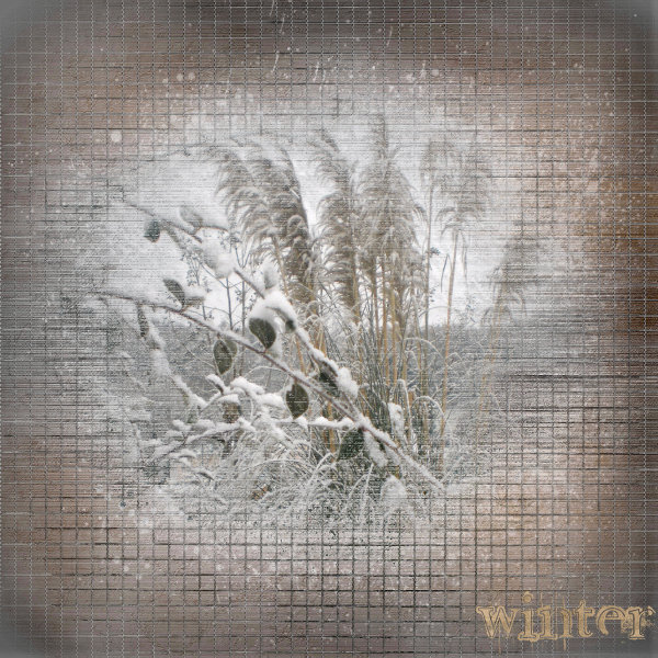 Récapitulatif Winter10