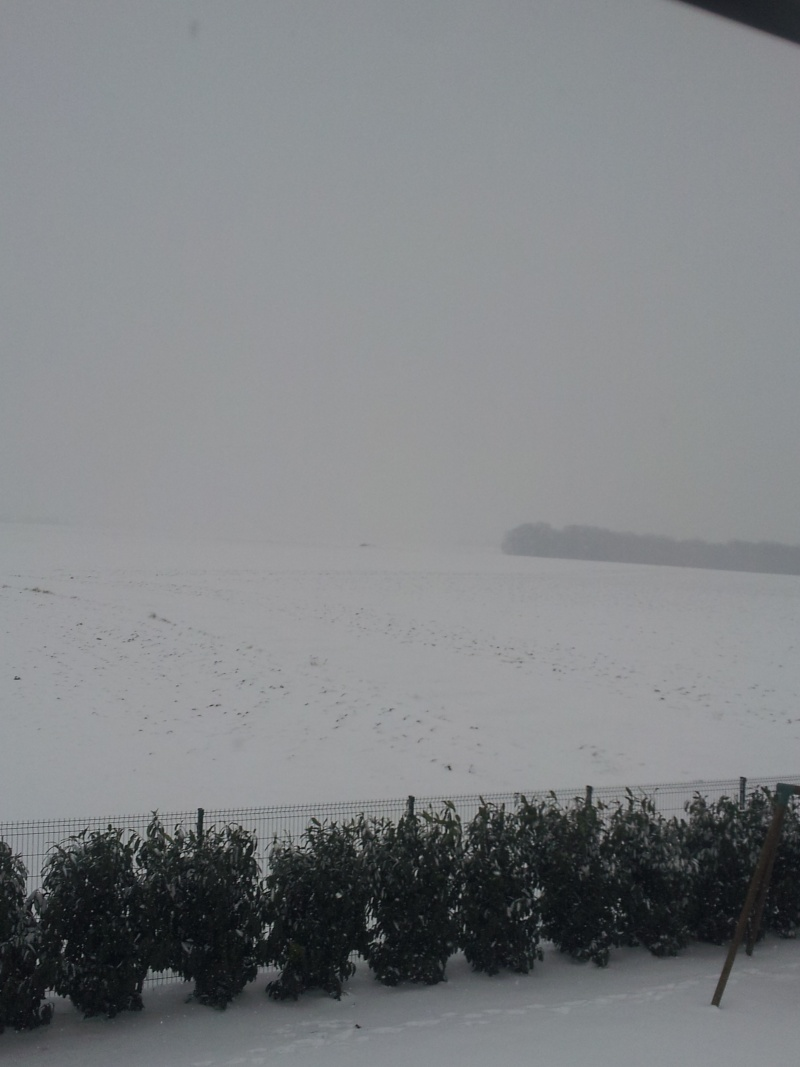 la neige est-elle arrivée chez vous ?  - Page 10 20130116