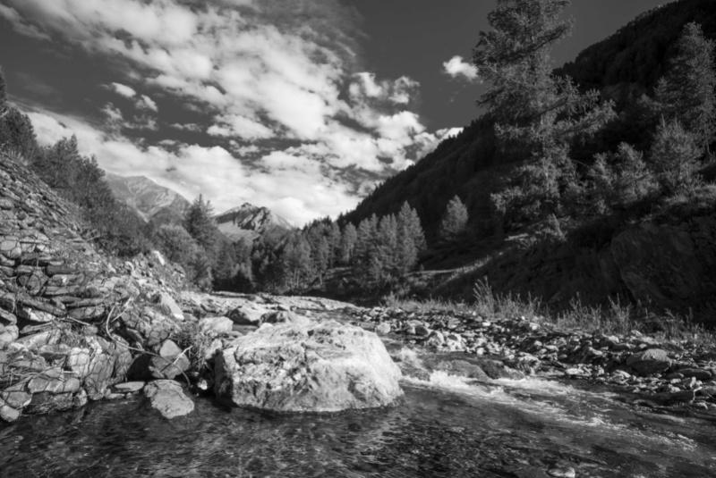 Retour à la rivière... L1001712