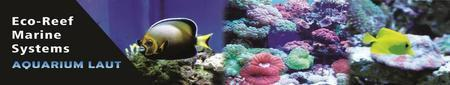 ECO-REEF MARINE SYSTEMS