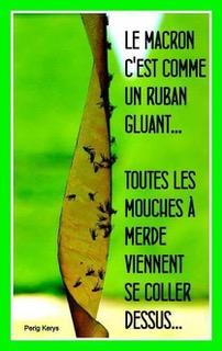 Bonjour / Bonsoir d' AOUT - Page 4 Att11110
