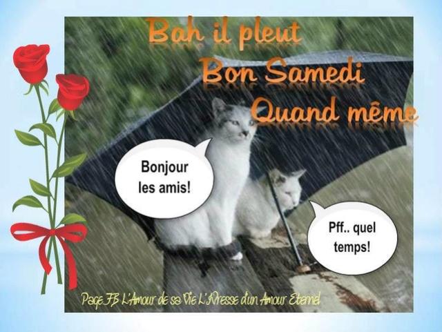 Bonjour /bonsoir de Septembre - Page 2 Samedi10