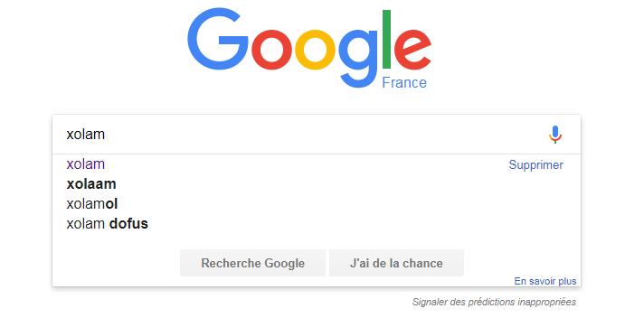 Recherche Google Xolam Xolam_13