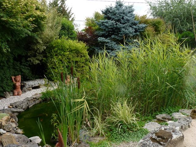 """Concours """"jardin cool"""" - les votes P1040418"""