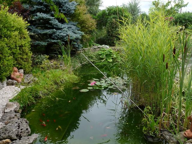 """Concours """"jardin cool"""" - les votes P1040419"""