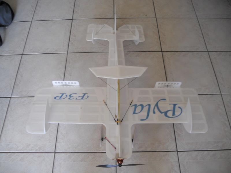 Avion F3P Dscn0011