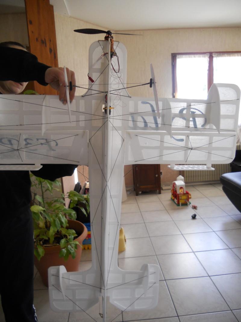 Avion F3P Dscn0012