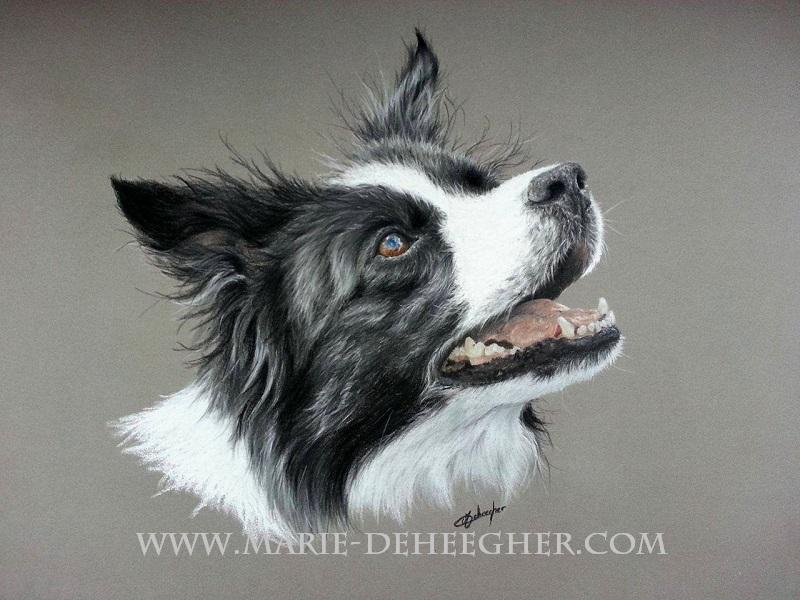 Marie Deheegher - Artiste Animalier - Page 3 Eliant10