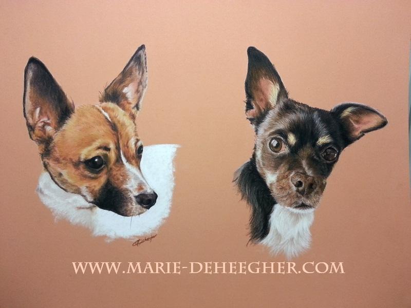 Marie Deheegher - Artiste Animalier - Page 3 June_e10