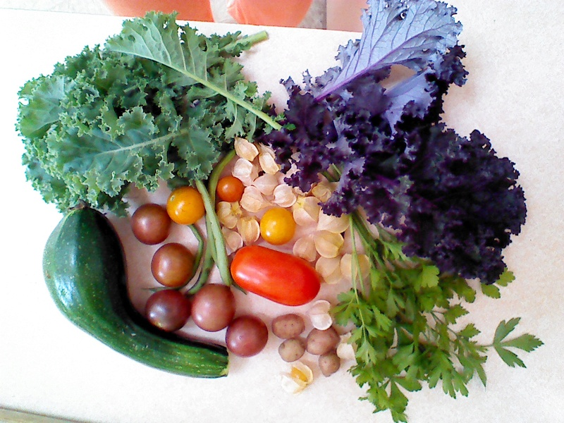 Monthly Avatar: September, Show Off Your Garden Harvest! - Page 3 Img_2060