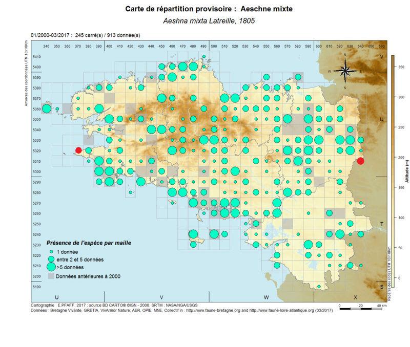 cartographies d'espèces très communes à compléter Aeshna13