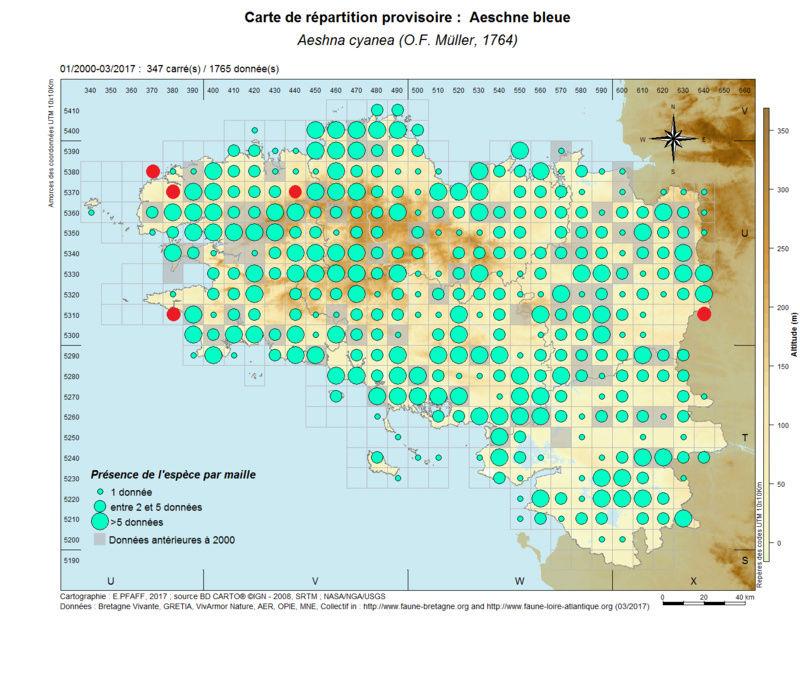 cartographies d'espèces très communes à compléter Aeshna14