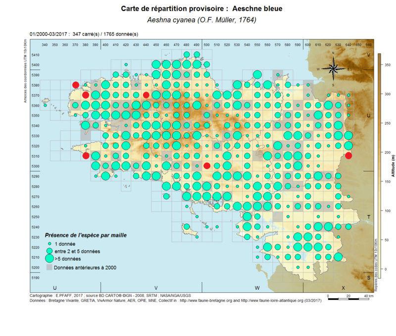 cartographies d'espèces très communes à compléter Aeshna16