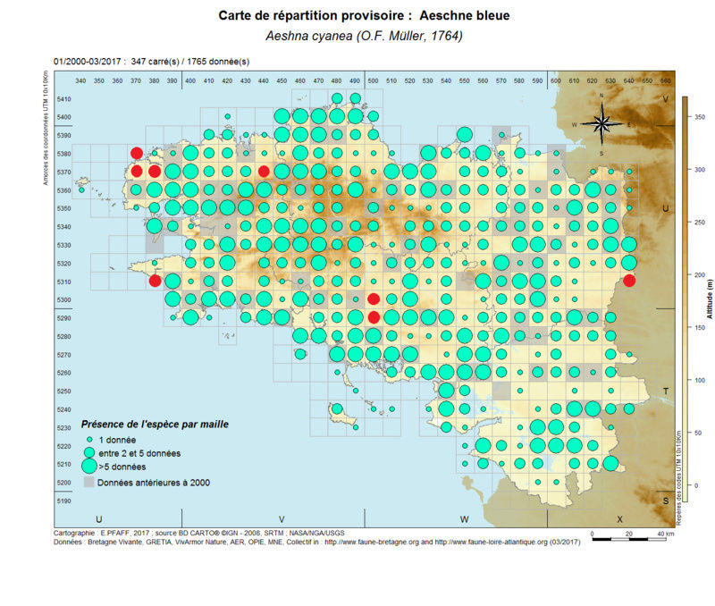 cartographies d'espèces très communes à compléter Aeshna25