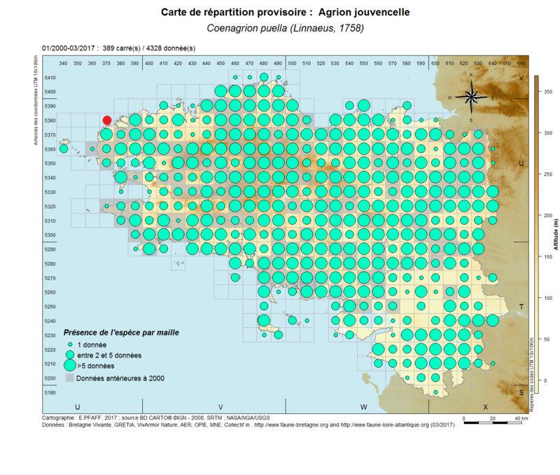 cartographies d'espèces très communes à compléter Coenag20