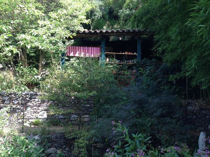 (30) Jardin des Sambucs - Cévennes Img_2833