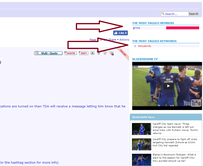 bluebirds - New forum features: Username tagging & hastags Captur14