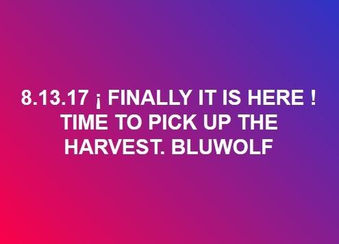 Bluwolf  8/13/17 B_8-1310