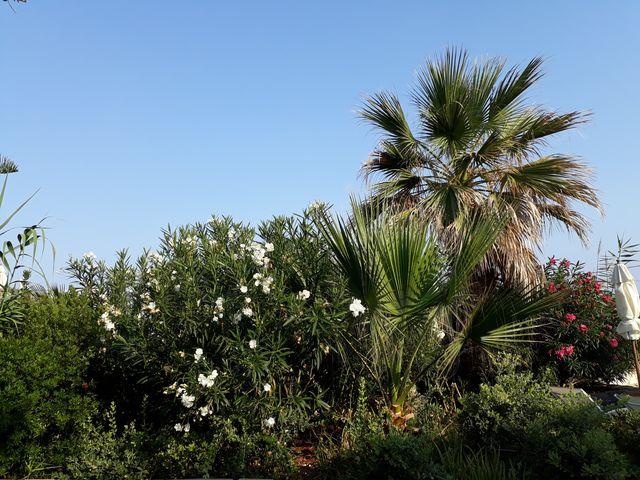 Mes vacances de l'été 2017 en Crète 1_hyte10