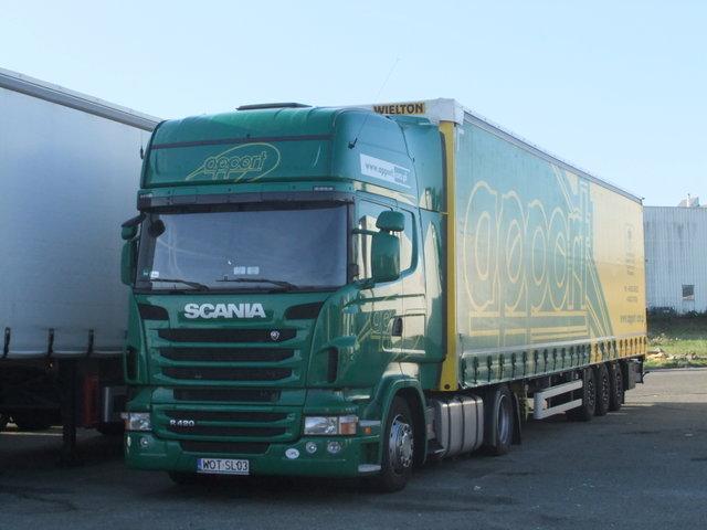 Parcs transporteurs routiers Sa150811