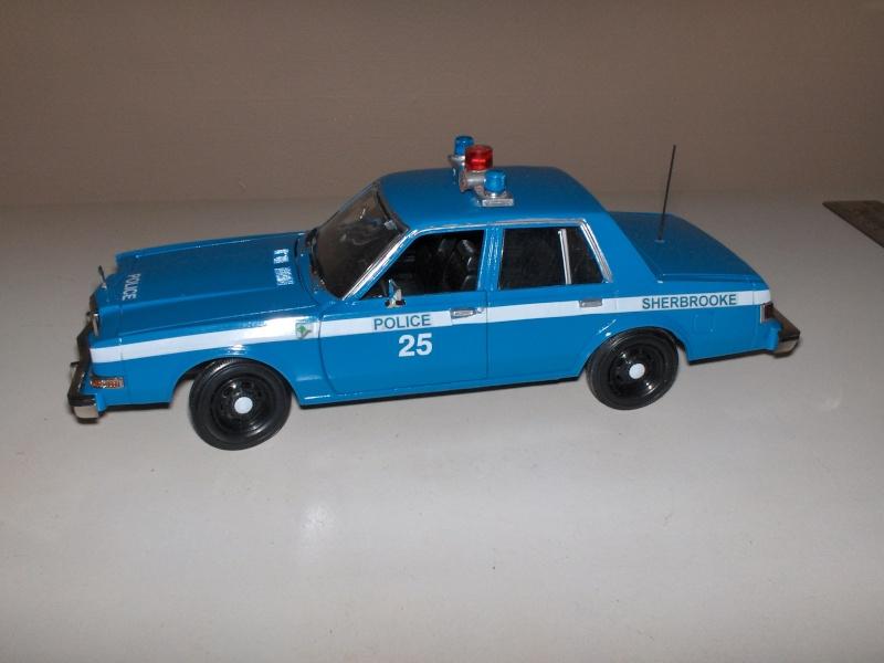 pick up de police 00810