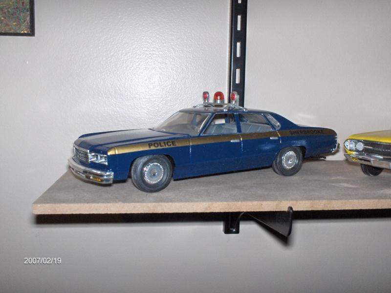 pick up de police 110